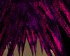 GR8 COLOR HAIR