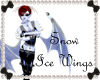 RS~Snow Ice Wings