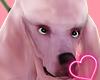 Poddle Dog [Pink] ♦
