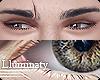 ▲ Eyes - Hazel. R