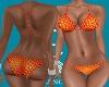 FC F.bikini