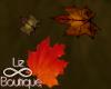 #Liz AutumnFalling Maple