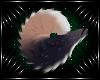 [K] Setra Tail V1