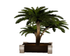 [BM] ALLEGHENY PLANT