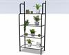:3 Plant Pots Shelf