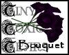 TTT Calla Lilies ~ Regal