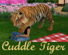 My Cuddle Tiger