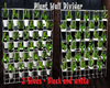 Plant Wall Divider
