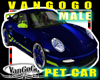 VG Blue SPORTs car AVI M