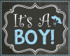 Its a Boy Gender Reveal