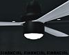 Ceiling Fan + Lamp