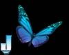 Polarys Butterflies
