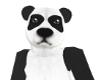 Panda Bear M