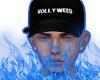 $ HOLLYWEED