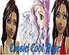 Cassiei HP Banner