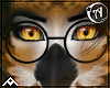 • | Tale | Glasses