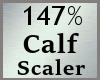 Scale Calf Calve 147% MA