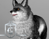 Gray Fox Pet