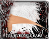 ! curved long elven ears