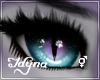 Steina - Eyes