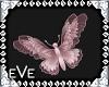 [eVe]ShabbyChicButterfly