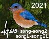 Garden Birds Sounds