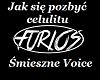 smieszne voice - Ceulit
