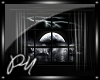 ~PM~ Moon Window