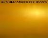 ZL GOLD AMETHYST HOOPS