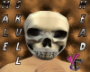 Male Skull Head