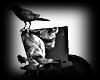 Halloween Raven Hat