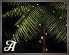 Palm Tree w/ Lights