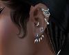 full earrings silver