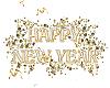 {LDs}NEW YEAR CLOCK Anim