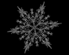 H* Snowflake 40 Particle