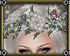~E- Frost Crown