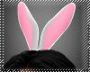! bunny ears 1