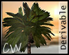 .CW, Tropical Palm