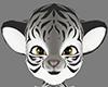 white tiger M furry head