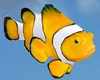 Animated Reef Fish