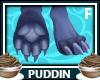Pddn   Kali Feet Paws