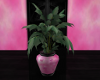[AM] Potted Plant 5