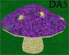 (A) Sunny Purp Mushroom