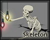+Chaos Skeleton+