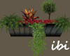 ibi 1239 Window Box