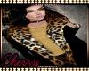 Jacket - Cheetah Glame