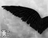 Y' Dark Angel Wings
