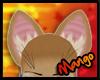 -DM- Puma Ears