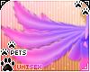 [Pets] Phir | tail v3