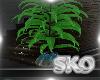 *SK*Fractal Plant